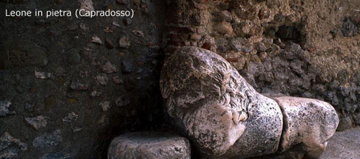 Leone in pietra di Capradosso